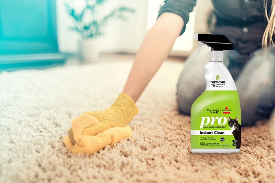 """Got Vomit Stains? BISSELL Pawsitively Clean recommends these four steps for cleaning vomit stains from your upholstery and carpet."