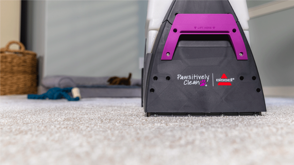 Pawsitively Clean carpet cleaning machine cleaning carpet in a home with pets