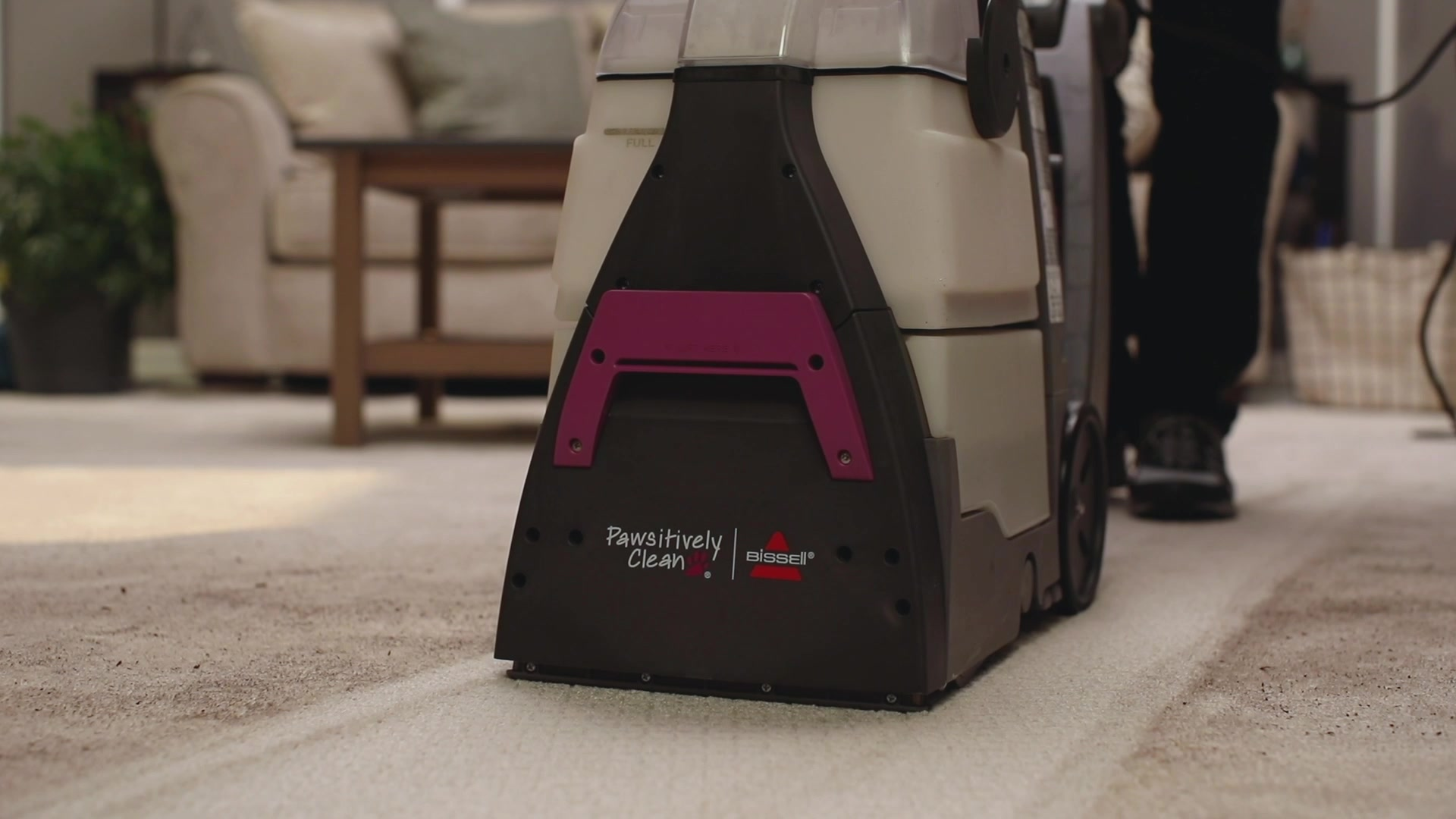 BISSELL Pawsitively Clean Carpet Cleaning Machine
